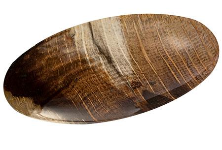 bois fossile petrified wood 94.97ct
