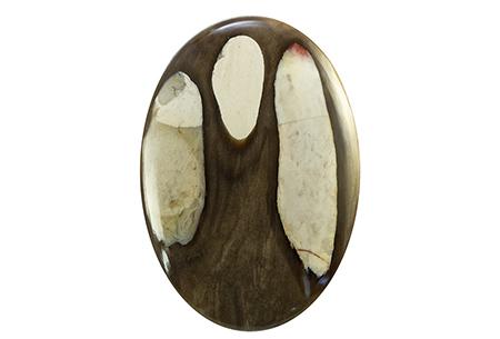 Bois fossile - Peanut Wood 67.76ct