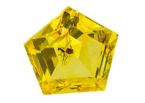 #ambre #amber #insect #0.75ct