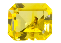 #ambre #amber #insect #0.90ct