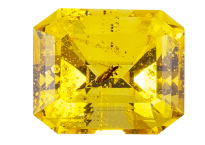 #ambre #amber #insect #2.48ct