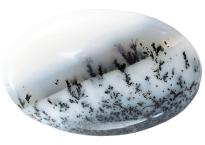 Agate dendritique 13.40ct