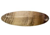 Bois fossilisé 235ct