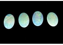 Opale oval 7x5mm