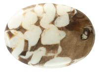 Bois fossile - Peanut Wood 38.84ct