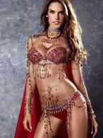 Adriana-Lima-and-Alessandra-Ambrosio--2014-VS-Fantasy-Bra