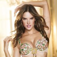 2012-11-07: $2.5 million for a Victoria's secret bra