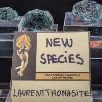 A new mineral species
