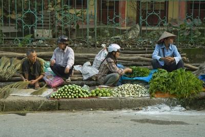 Luc Yen - Vietnam