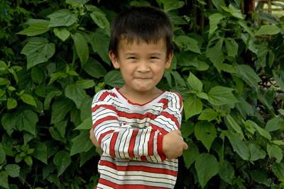Vietnam Luc Yen