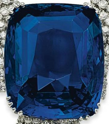 blue-belle-of-asia