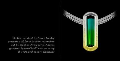 ADAM NEELY #BicolorTourmaline #diamonds #pendant #gold #2018