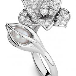 MELLERIO DITS MELLER-collection Medicis-bague Florissante-or gris-diamant-perle toi et moi