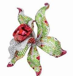 Orchidée de Cartier...