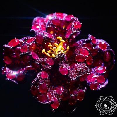 Fleur par Cindy Chao 1