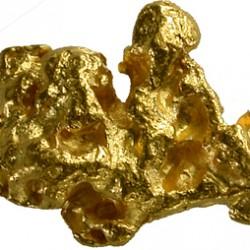 pepite dor - gold nugget